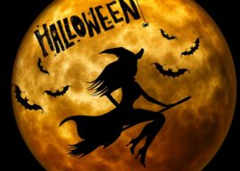 Cast a Lil' Spell.. It's Halloween! Best Horror Movies to Watch!